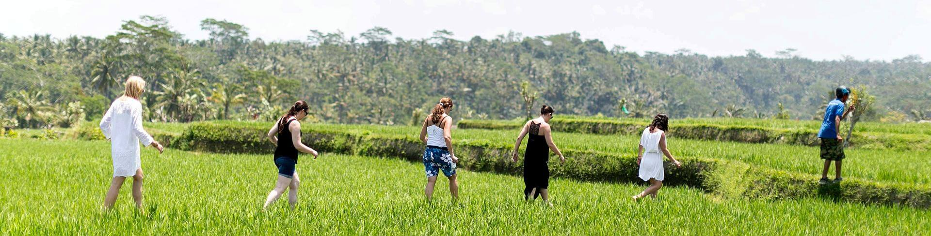 Girls walking through the Bali rice paddies