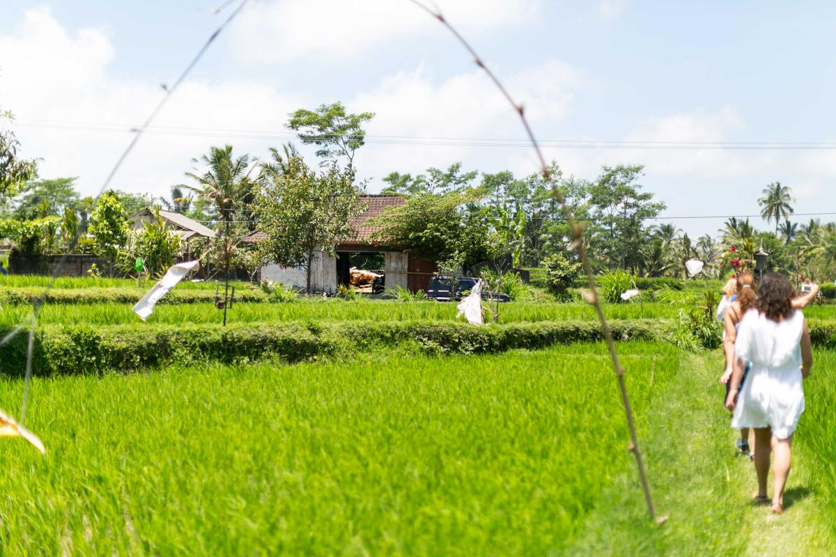 Relax and unwind in Bali, girls walking through rice fields