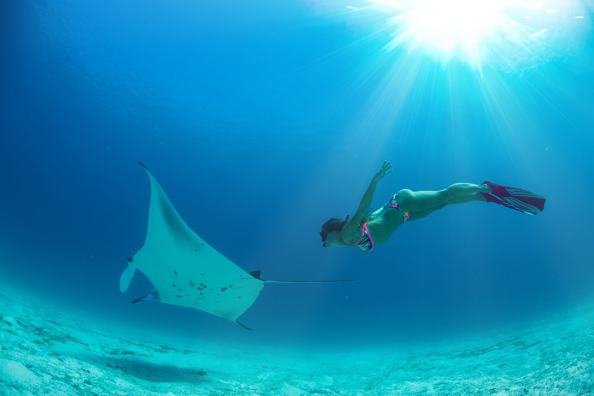 Woman up close freediving with rays, sun spectacularly shining through surface of water